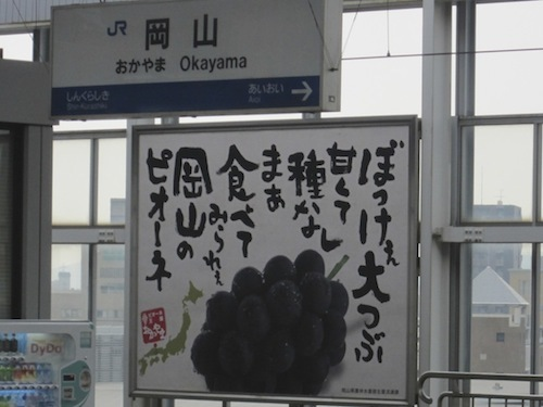 IMG_4368.jpg